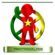 A: blogueurs camerounais