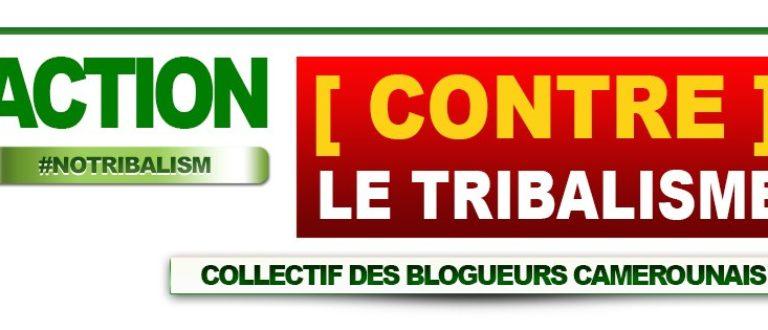 Article : Ce petit Cameroun en moi