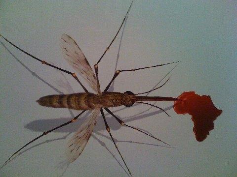 Source: Campagne contre le paludisme