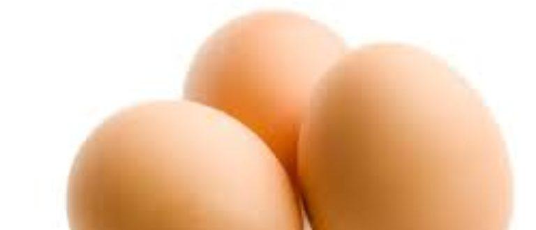 Article : Vivre sans œufs